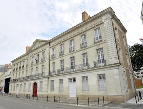 Recherche de nid de Frelons au tribunal administratif de Nantes